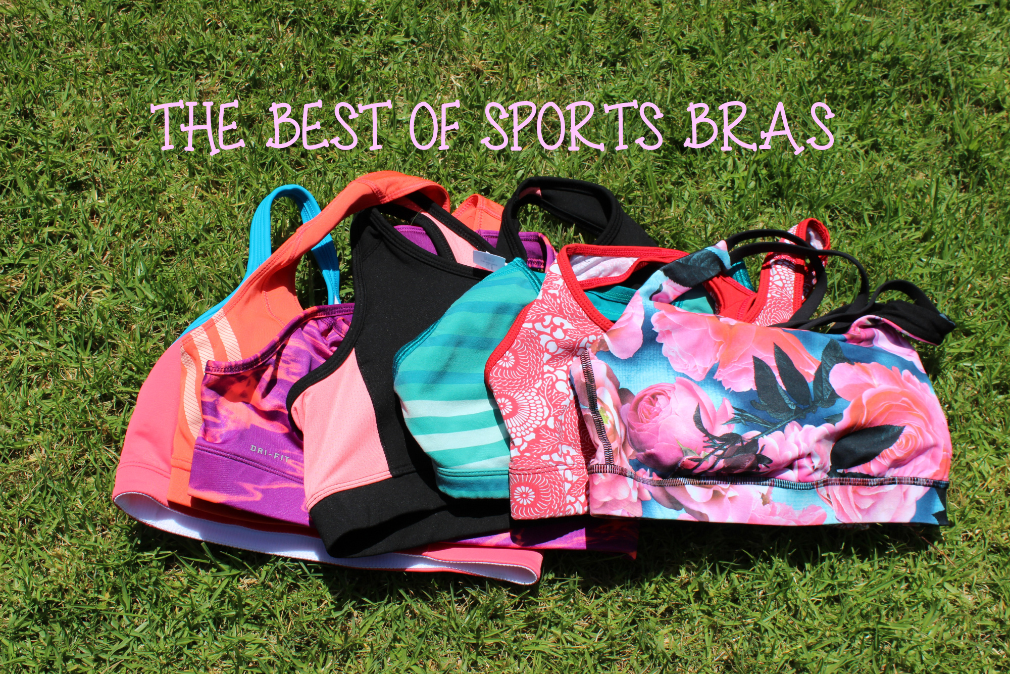 THE BEST OF SPORTS BRAS